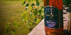 Gadino Cellars - Fine Virginia Wines