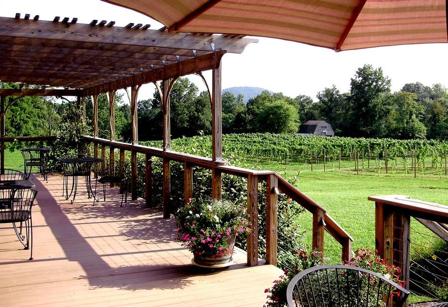View of the Gadino Cellars Vineyard