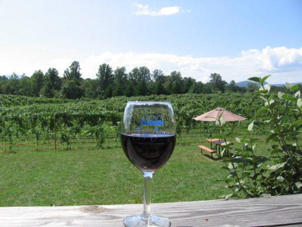 Glass of Gadino wine